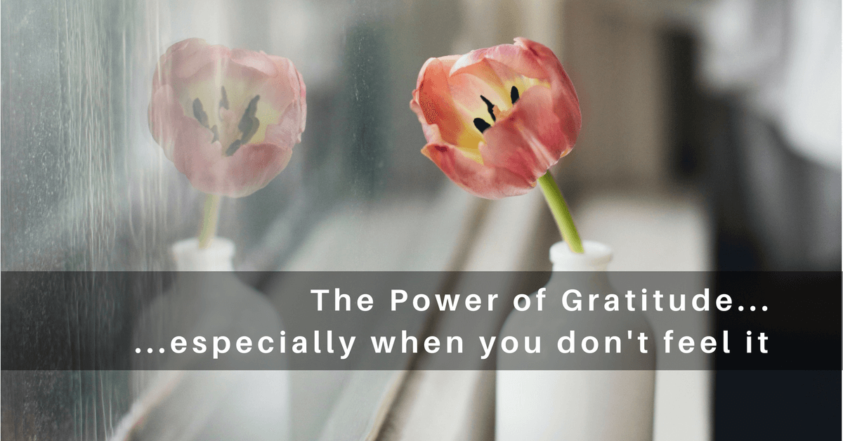 044 – The Power of a Grateful Heart… Especially When You Don't Feel Like it!