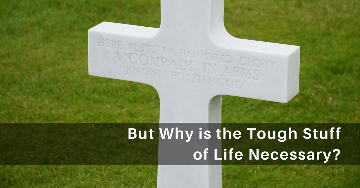 058- But Why is the Tough Stuff of Life Necessary?