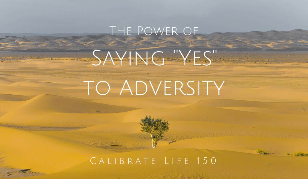 Saying Yes to Adversity